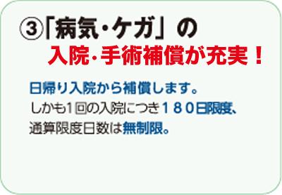 ③「病気・ケガ」の入院・手術補償が充実!